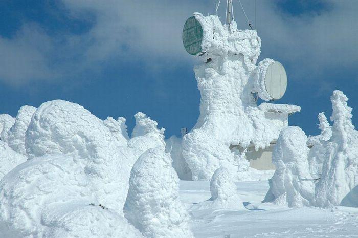 Снег везде
