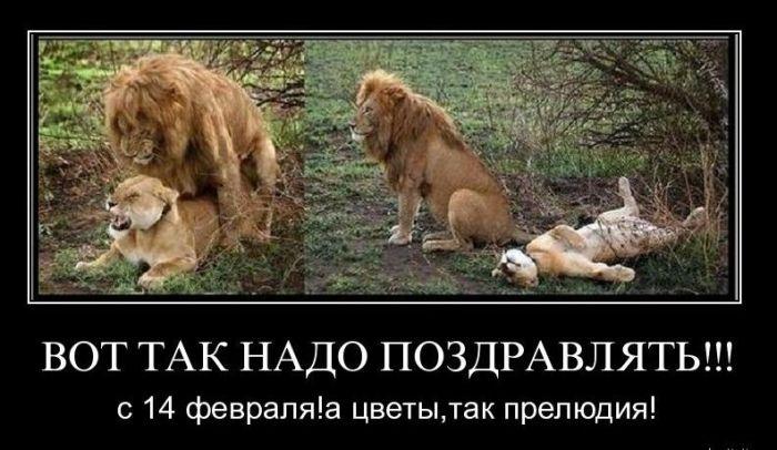 prostitutki-v-gorode-belorechensk