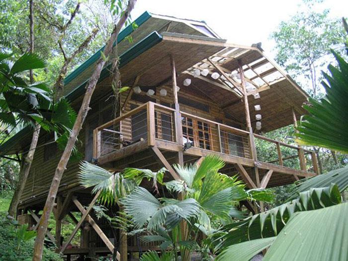 Экологическое комьюнити в джунглях Коста-Рики