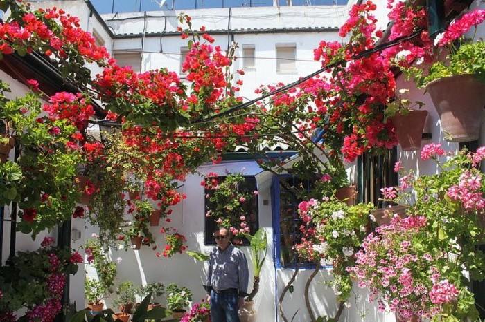 Фестиваль цветов в испанской Кордове (27 фото)