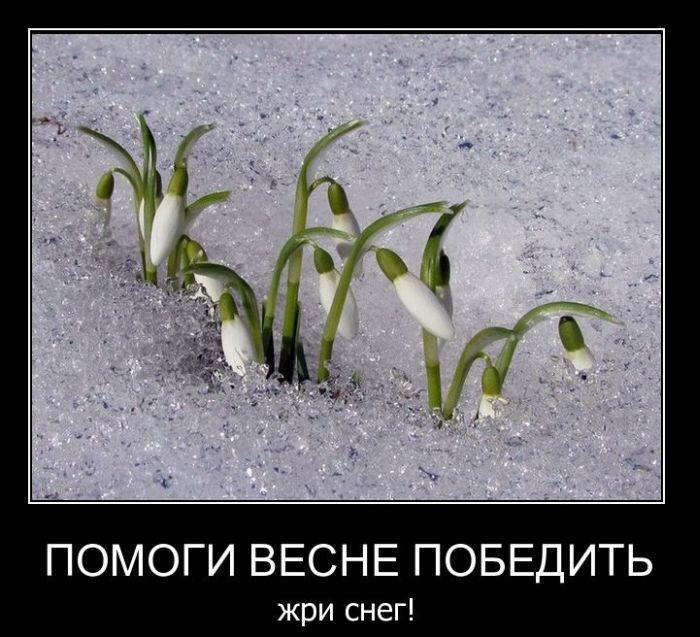 папа фото, демотиваторы последний день весны очень хорошо подходит