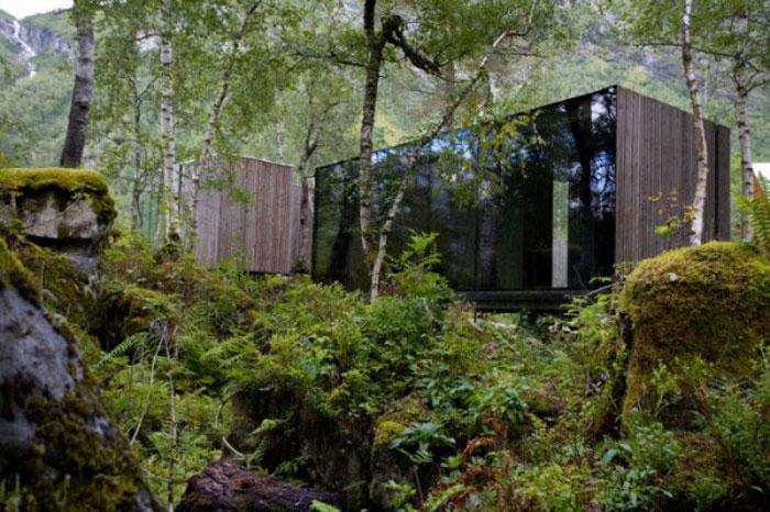 Отель в лесу в Норвегии