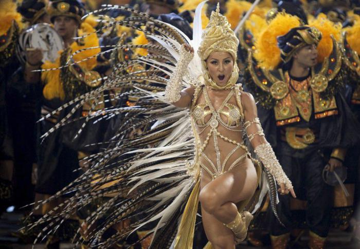 Карнавал в Рио-де-Жанейро (60 фото)