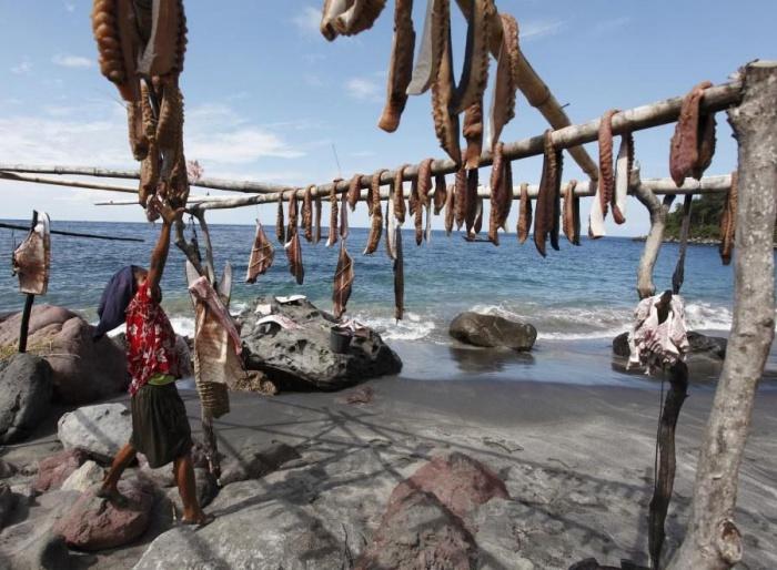 Охота на китов в Индонезии (23 фото)