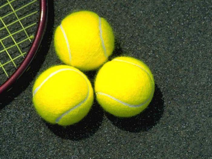 Вторая жизнь теннисных мячиков (21 фото)