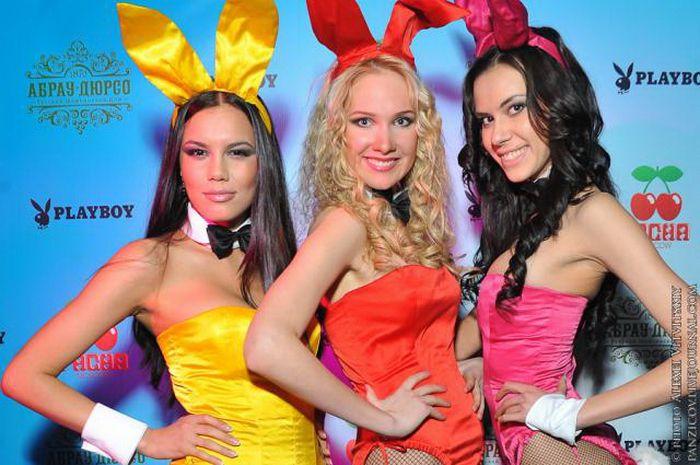 Playboy's Bunny Theatre в Pacha Moscow (27 фото)