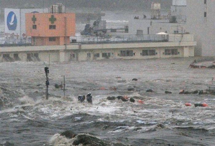 Какая была высота волны цунами в Японии (3 фото)