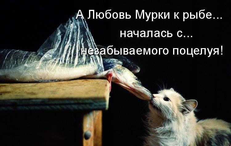 http://doseng.org/uploads/posts/2011-04/1303961239_0001.jpg