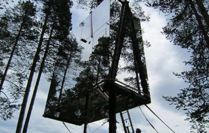 Отель на дереве (10 фото)