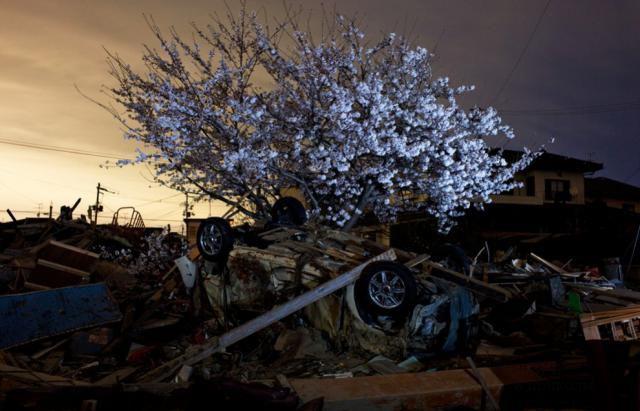 Япония спустя два месяца после катастрофы