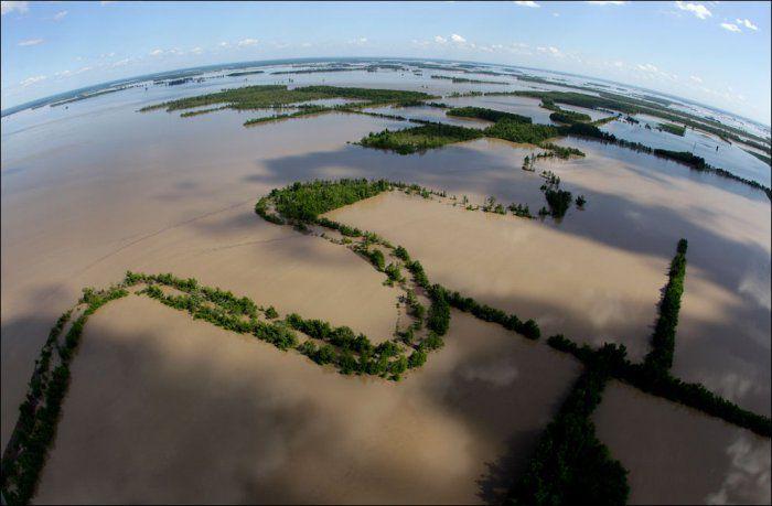 Разлив реки Миссисипи (18 фото)
