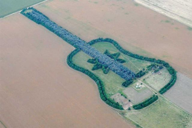 Гигантская гитара из деревьев (6 фото)
