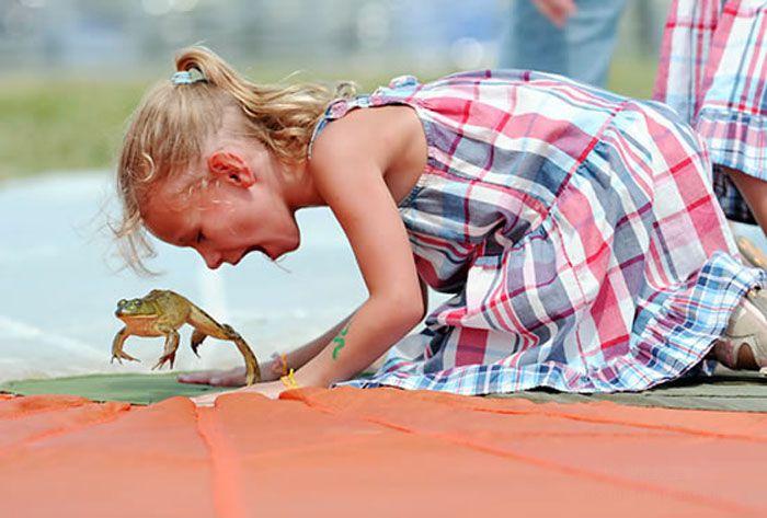 Чемпионат по прыжкам лягушек