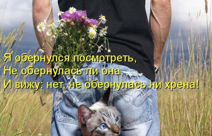 http://doseng.org/uploads/posts/2011-06/1307570316_1306852552_1306477707_kotomatrix_04.jpg