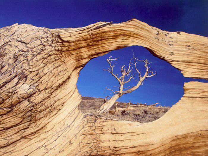 Красивые фотографии природы (48 фото)