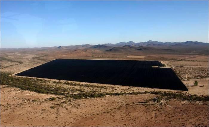 В Мексике военные обнаружили огромную плантацию конопли (6 фото)