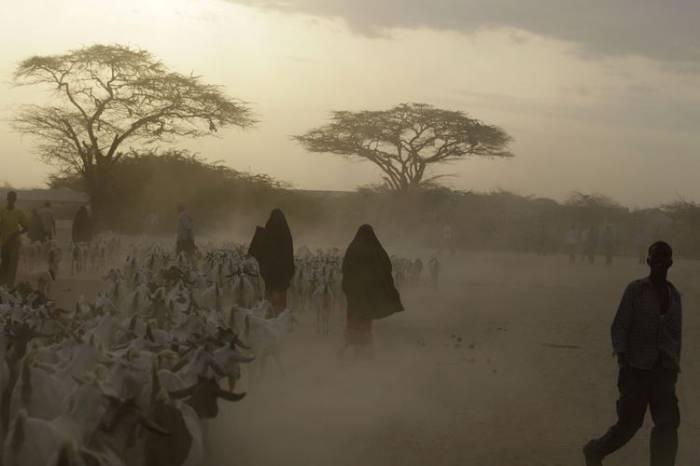 Высыхающая Сомали