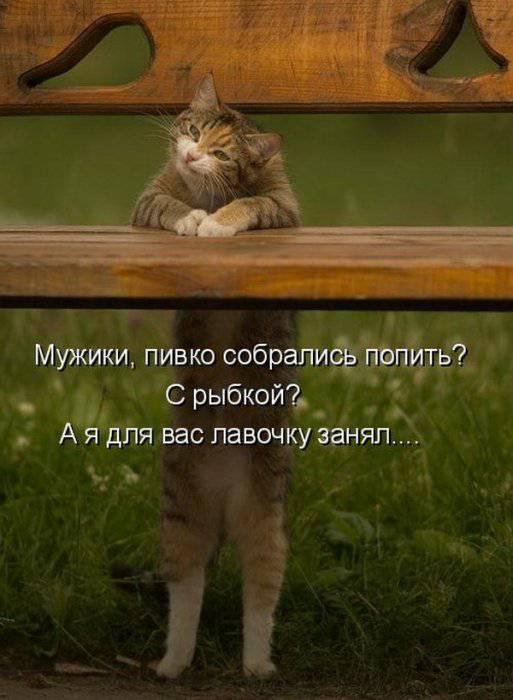 http://doseng.org/uploads/posts/2011-08/1314597038_1260173622_1259935249_091.jpg