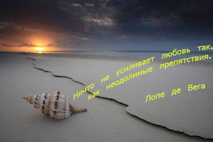 Жизненные цитаты в картинках