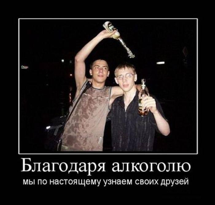 смешные картинки алкоголь