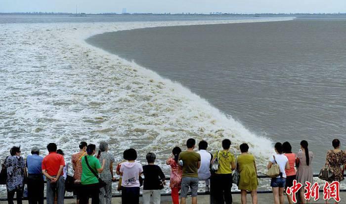 Бушующие волны Цяньтан реки (28 фото)