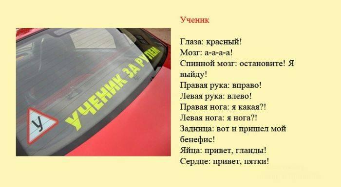 Шуточная классификация водителей