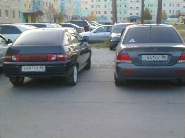 Они нашли друг друга...(3 фото)