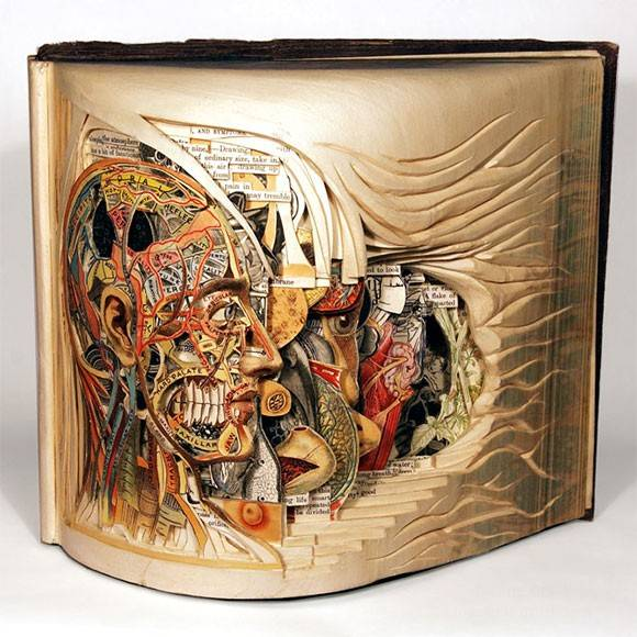 Скульптуры из книг Брайана Деттмера (54 фото)