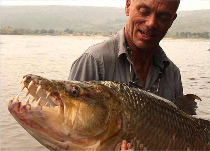 ловля рыбы на дьявола видео