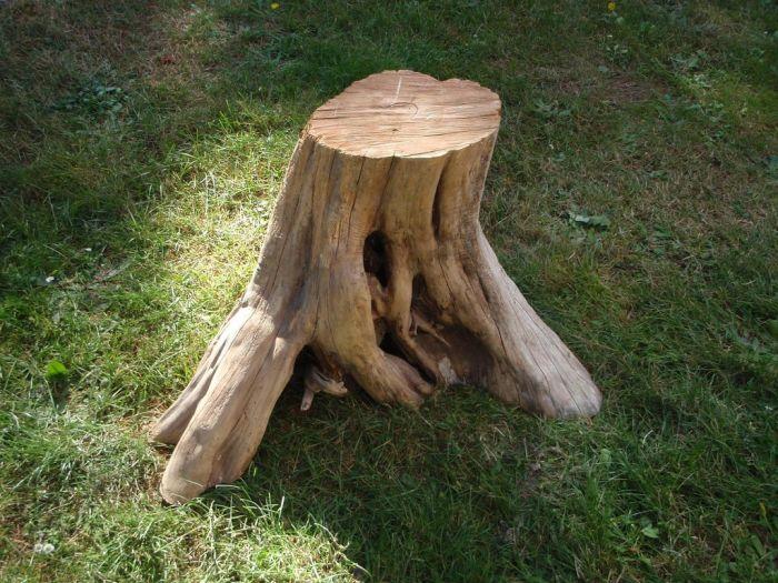 Стол из старого пня (10 фото)