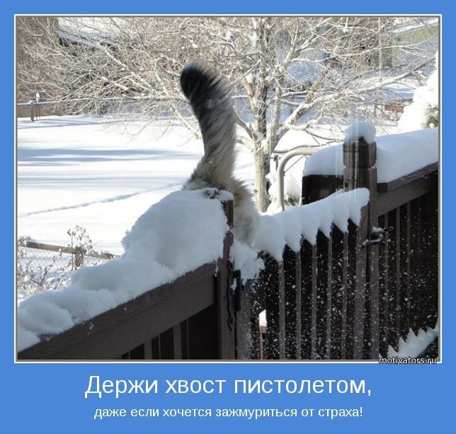 http://doseng.org/uploads/posts/2012-04/1335198249_doseng.org_1335116452_motivator-34403.jpg