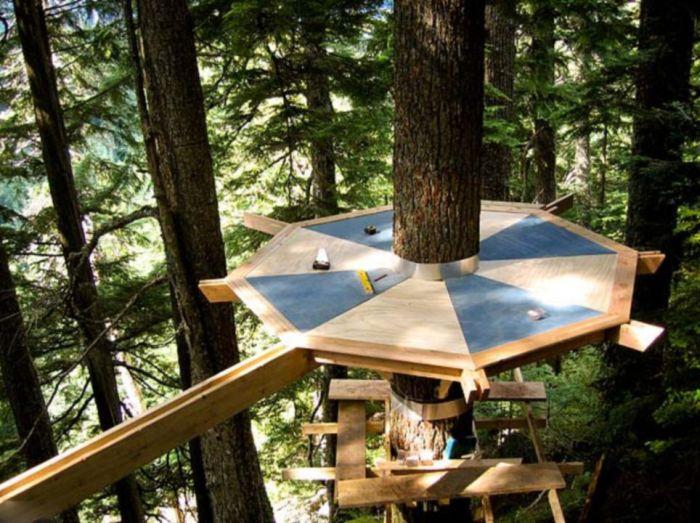 Классный дом на дереве (13 фото)