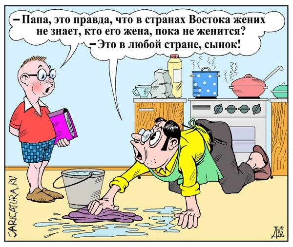 Смешные карикатуры (41 картинка)