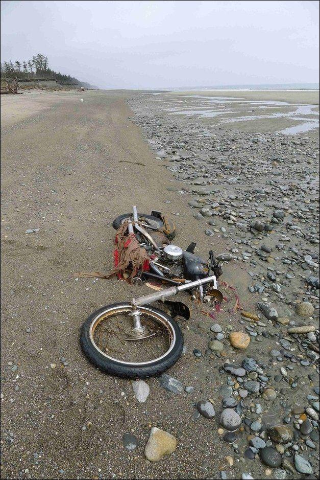 Путь Harley Davidson: Из Японии в Канаду и обратно (5 фото)