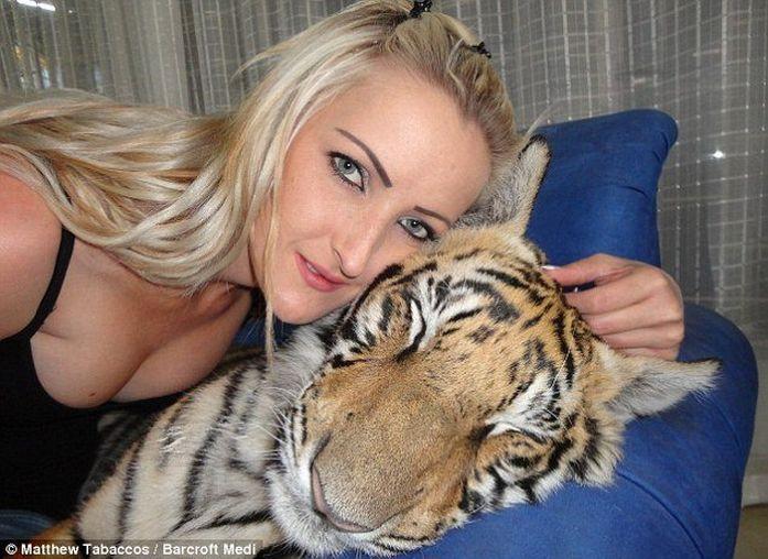 Очаровательный домашний тигрёнок Enzo (17 фото)