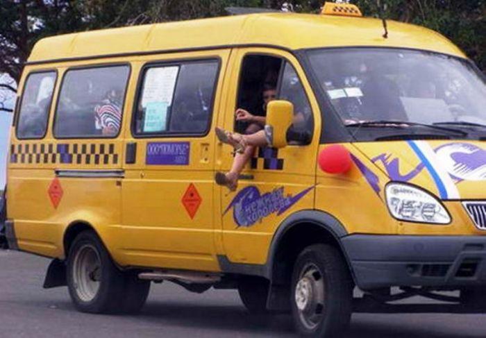 Приколы с маршрутными такси