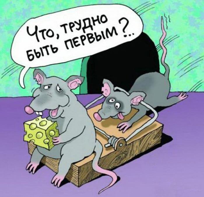 Смешные карикатуры (51 картинка)