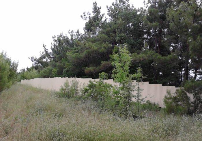 Забор вокруг дворца Патриарха растет (9 фото)