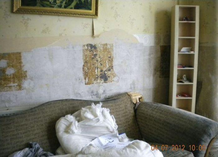 Парень поругался с владельцем квартиры (12 фото)
