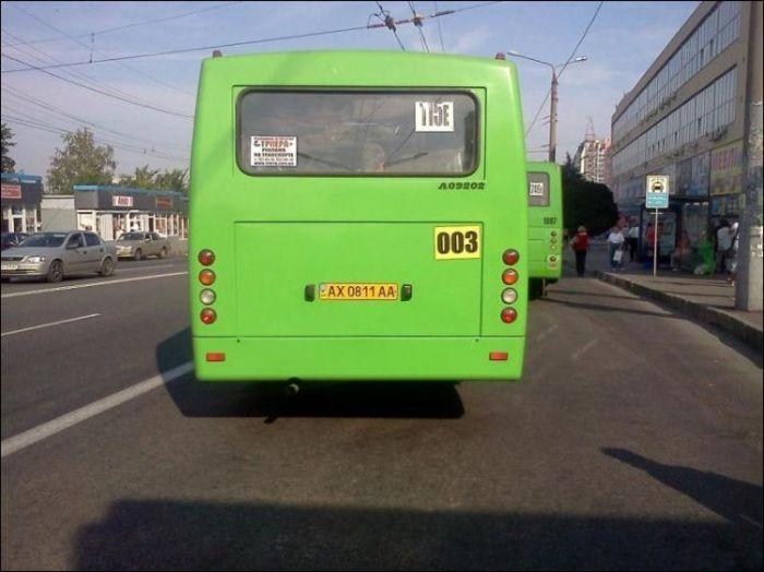 В харьковской маршрутке... (4 фото)