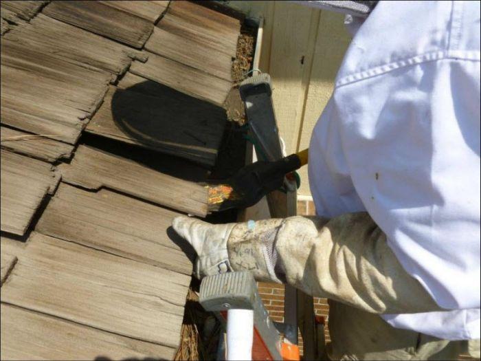 Пчелиный улей под крышей частного дома (6 фото)