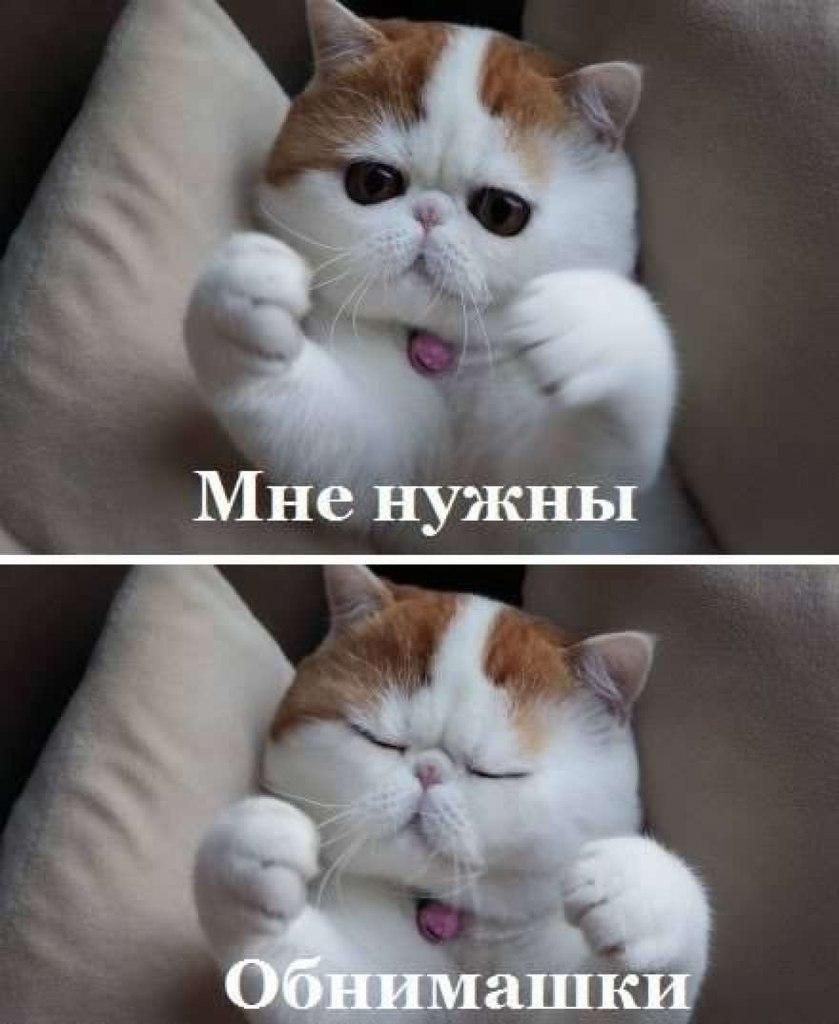 Хотите меня фото 6 фотография