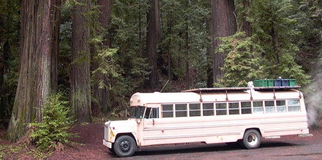 Школьный автобус переделанный в дом на колесах (8 фото)