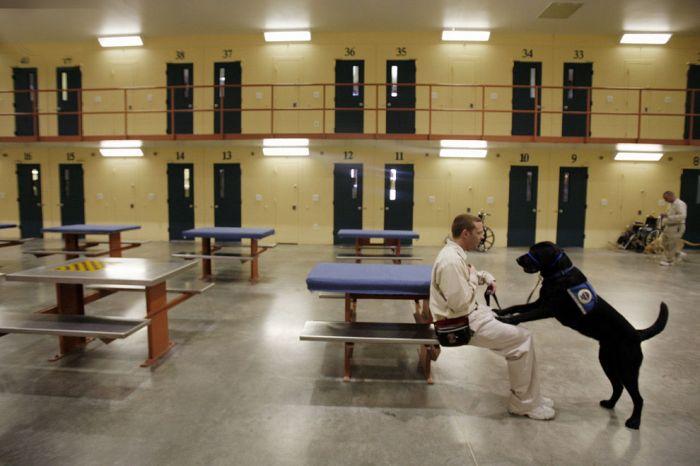 Будни заключенных за рубежом