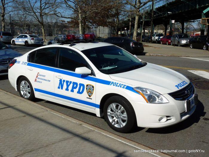 Автомобили полиции Нью-Йорка