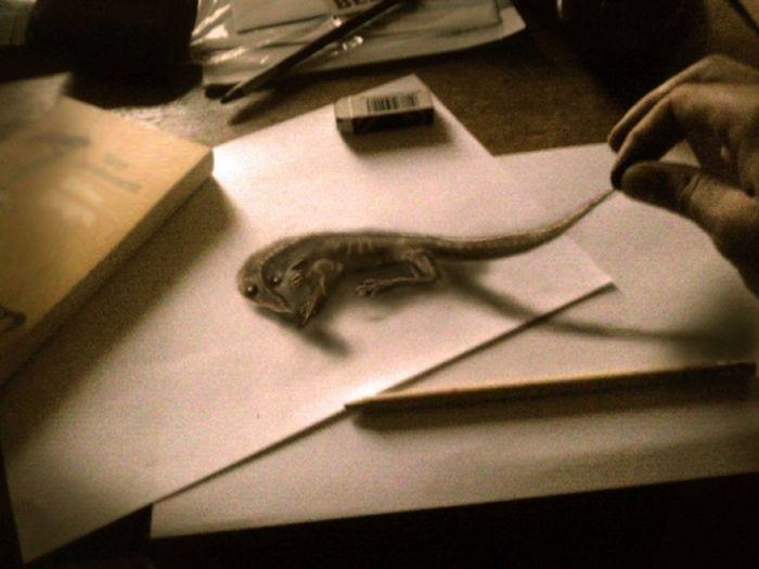 Великолепные 3D-рисунк карандашом