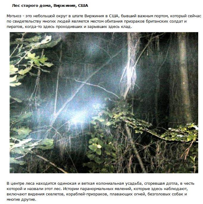 Таинственные леса с нечистой силой (10 фото)