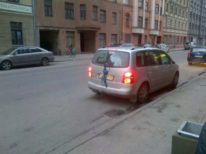 Приколы которые можно увидеть только в Латвии (51 фото)