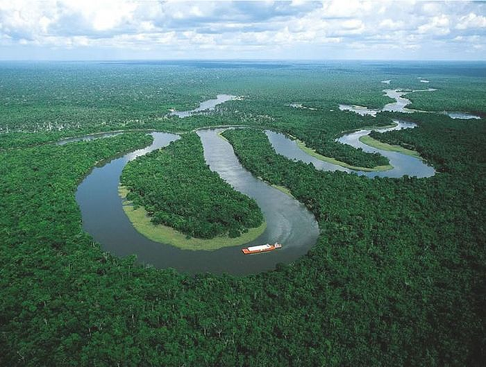 Захватывающие кадры из амазонских лесов (46 фото)