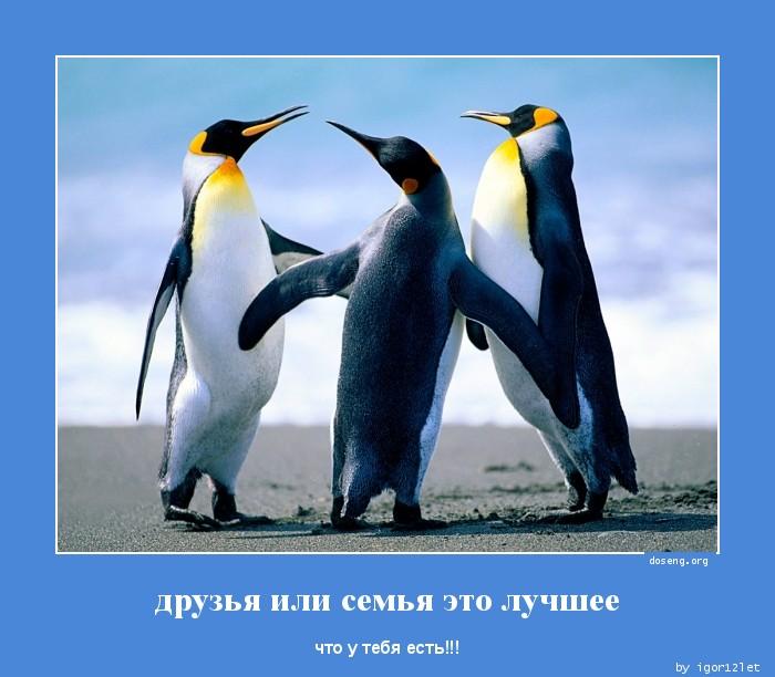 http://doseng.org/uploads/posts/2013-01/1357750873_druzya-ili-semya-eto_doseng.org.jpg
